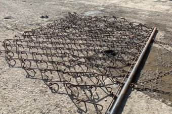 10ft Chain Harrows